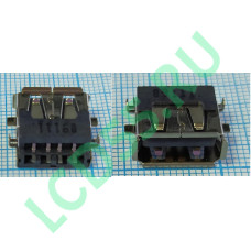 Разъем USB 2.0 J024
